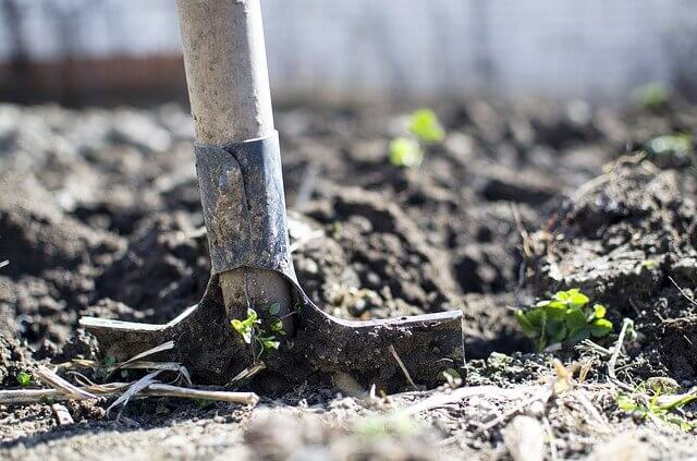 working on backyard soil