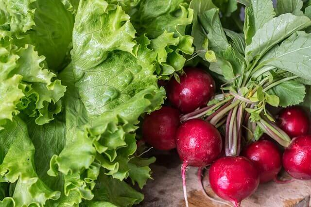 organically grown veggies